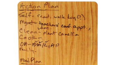 Action Plan by Susan P.